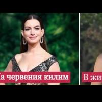 Знаменитости извън червения килим (Снимки):