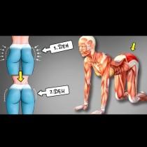 7 перфектни упражнения, които оформят бедрата: Всичко мазно изчезва, заменено от секси извивки!
