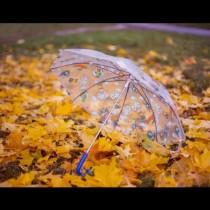 Синоптиците с подробна ПРОГНОЗА за октомври: Такива АНОМАЛИИ отдавна не сме имали!