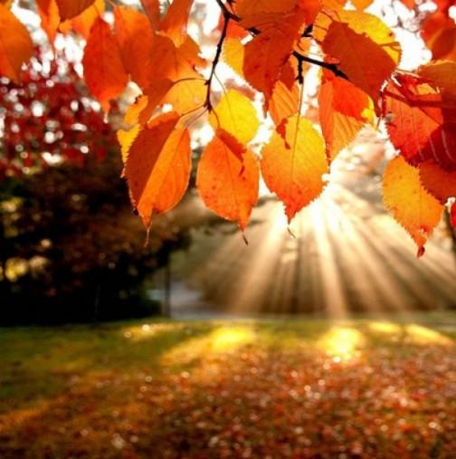 АСТРОПРОГНОЗАТА от 20 до 26 септември: РАК, силен прилив на енергия! ЛЪВ, сбъдвате мечтите си! СКОРПИОН, успехът е близо!