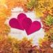 Хороскоп за днес, 27 септември: ЛЪВ, добро време за реализация! КОЗИРОГ, възможни печалби и подаръци! РИБИ, ясни решения!