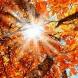 Седмичен хороскоп 27 септември - 3 октомври: ОВЕН, слушайте вътрешния си глас! ВОДОЛЕЙ, в търсене на истината!
