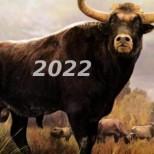 Славянски хороскоп за 2022 г. по зодии, които не сте и чували