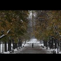 Честит първи сняг! Ето кои части на страната вече побеляха (Снимки):