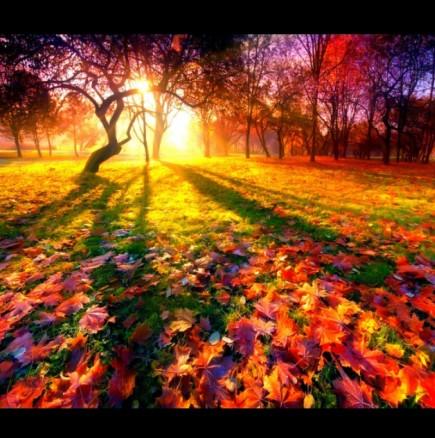 Хороскоп за днес, 25 октомври: БЛИЗНАЦИ - очаква ви приятна изненада; ВЕЗНИ - получавате повече, отколкото очаквате!