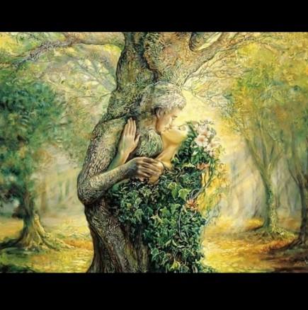 Кое дърво си според мистичния КЕЛТСКИ хороскоп на друидите?