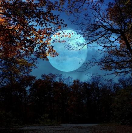 Мощна Луна преминава в огнения знак Лъв: ТЕЛЕЦ, укрепвате финансите! БЛИЗНАЦИ, важна информация! ЛЪВ, започва мощен период!
