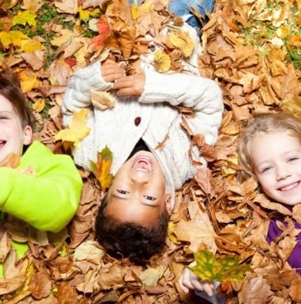 Хороскоп за утре 28 октомври-СТРЕЛЕЦ Силен личен късмет, ОВЕН Успешен ден