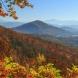Хороскоп за днес 17 октомври-Близнаци-Приятни изненади, Стрелец-начало на един много плодотворен период