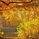 Хороскоп за днес 21 октомври-Козирог-Сбъдване на желанията, Рак-Радостни новини