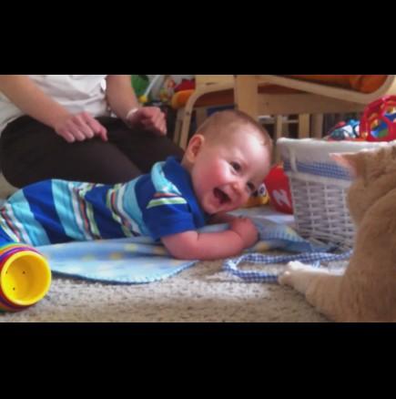 Котките обичат бебета - мила и забавна видео компилация