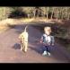 Най-добри приятели: Защо всяко дете трябва да расте с куче? (Видео)