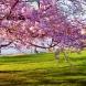 Метеоролозите обявиха прогноза за времето през месец април. Вижте какво ще бъде времето за Великден!