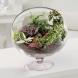 12 красиви идеи за малка градинка в стъклен съд