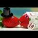 Ягоди за червенокосите