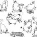 Характерът на коя котка носиш според зодията си