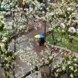 Прогноза за времето през май - дъждовете няма да спрат скоро!