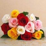 Как се тълкува подаряването на четен и нечетен брой цветя
