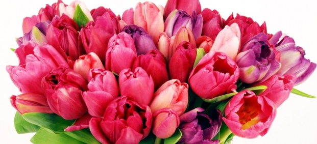 Честит 8 март, скъпи дами!