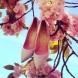 Обувки за пролет / лято 2014