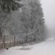 Заваля първи сняг!