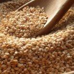 Защо е полезно сусамовото семе