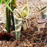Какво да направим в Новогодишната нощ, за да забогатеем през 2013 г.