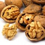 Орехите-храна за мозъка