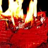 Дъщерята на Клинт Истууд-Франческа, изгаря 100 000 долара за развлечение