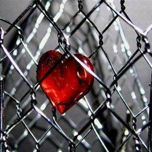Тънката линия между любовта и омразата