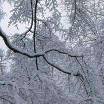 Синоптиците обявиха прогнозата за времето през декември 2014 и времето по Коледа и Нова година
