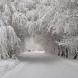 Синоптици: Зимата ще ни връхлети изведнъж