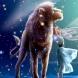 Годишен хороскоп 2015 Лъв