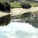 Момче на 8 години се подхлъзна, падна в канал и се удави