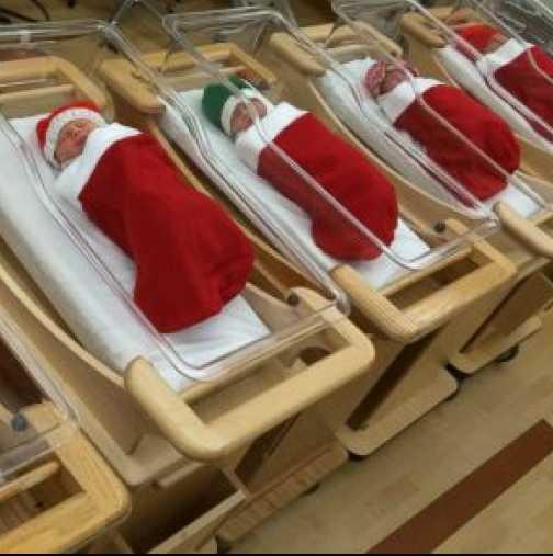 Бебета, родени по празниците, си отиват вкъщи в коледни чорапчета