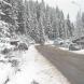 ЧЕРВЕН КОД за силни снеговалежи в две области!