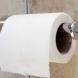 Как тоалетната ви да мирише свежо само с една съставка