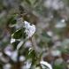Зимата се завръща! Дъжд, сняг и по-ниски температури