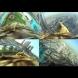 Дубай от гледната точка на един орел (видео)