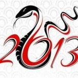 Как да имаме успехи през 2013 - годината на Змията