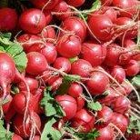 Полезни зеленчуци през пролетта