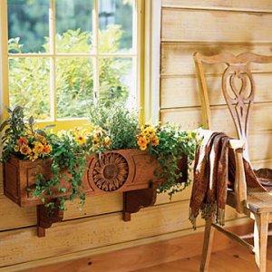 Съвети за отглеждане на цветя вкъщи