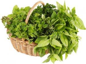 Най-популярните билки в България