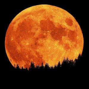 Луната и нейните домове в астрологичен план