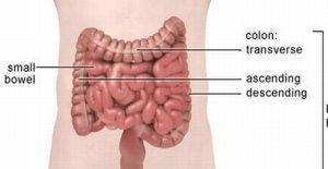 Колит –симптоми и лечение