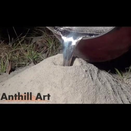 изкуството на мравките