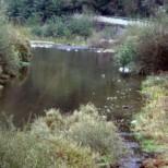 Поредната ужасяваща трагедия разтърси страната! Извадиха удавено дете от река Чепинска
