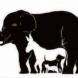 Тест за интелигентност: Колко животни виждате на снимката?