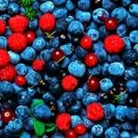 Горските плодове предпазват мозъка от стареене