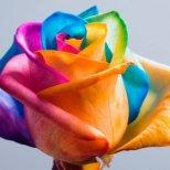Избери цвета, който ти допада най-много и ще разбереш нещо за себе си